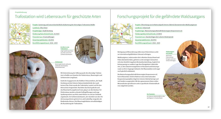 Jahresbericht 2018 – Stiftung NaturSchutzFonds Brandenburg